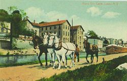 A mule team on pulling a barge on the Enlarged Erie Canal in Lyons.